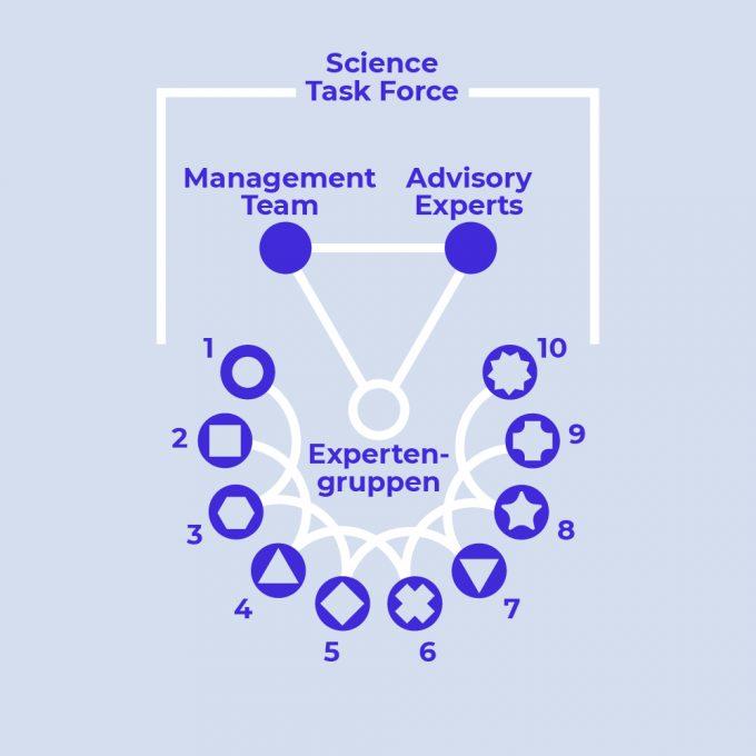 3_Organisation_D