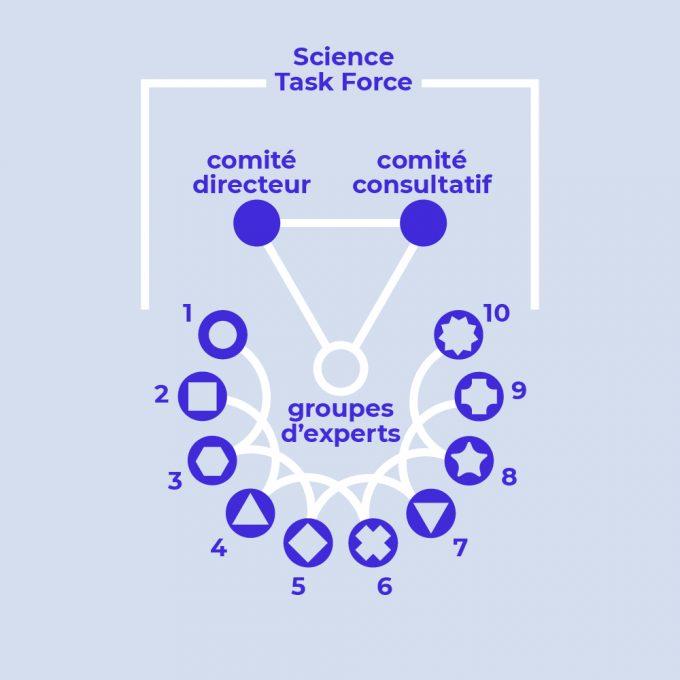 3_Organisation_F